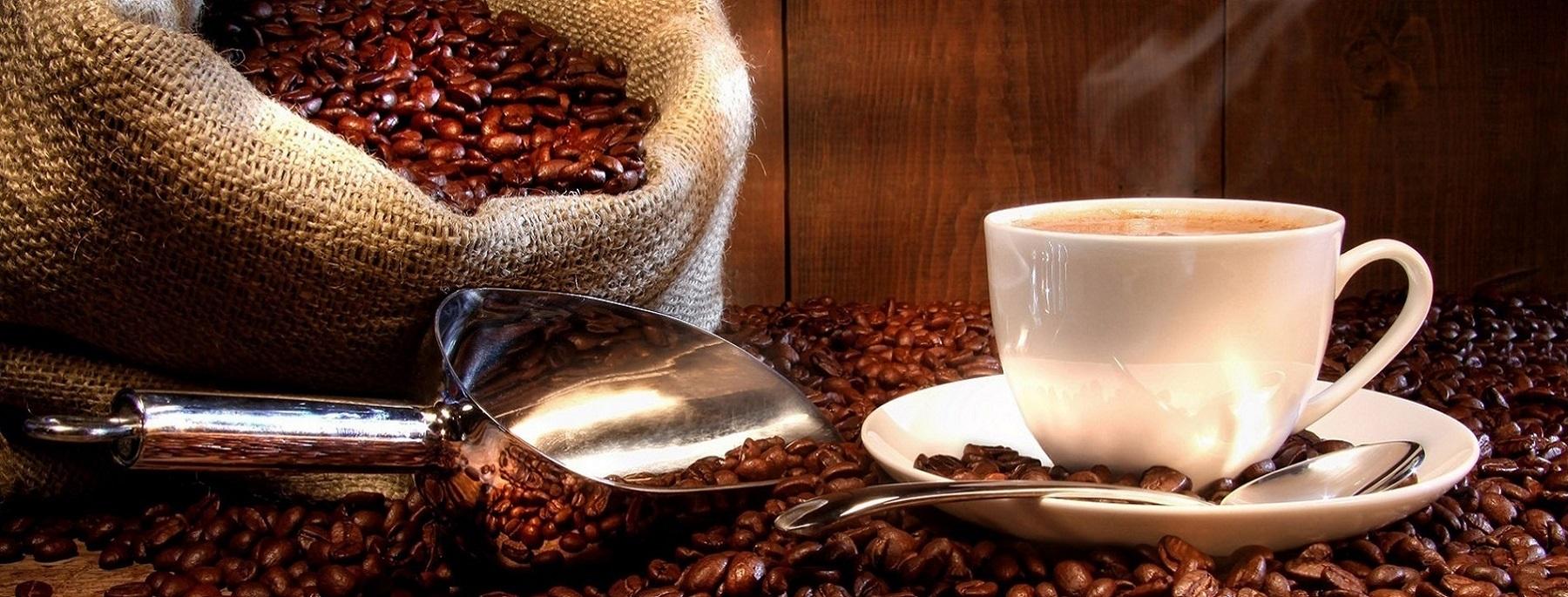 coffee banner Best Drip Coffee Maker Under